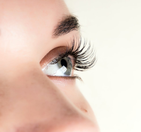 Lash Classes To Make Your Career Successful